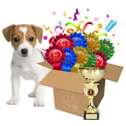dog show rosette bundle