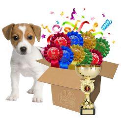 dog show rosette bundle