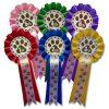 1st - 6th dog show rosettes