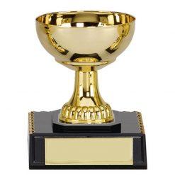 westbury cup