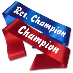 champion and re. sash pack