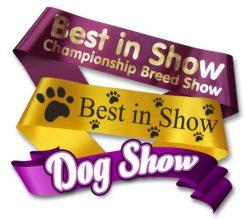 Dog Show Sashes