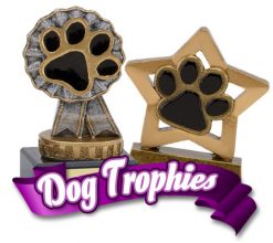 Dog Show Trophies