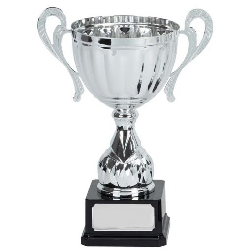 607d silver cup